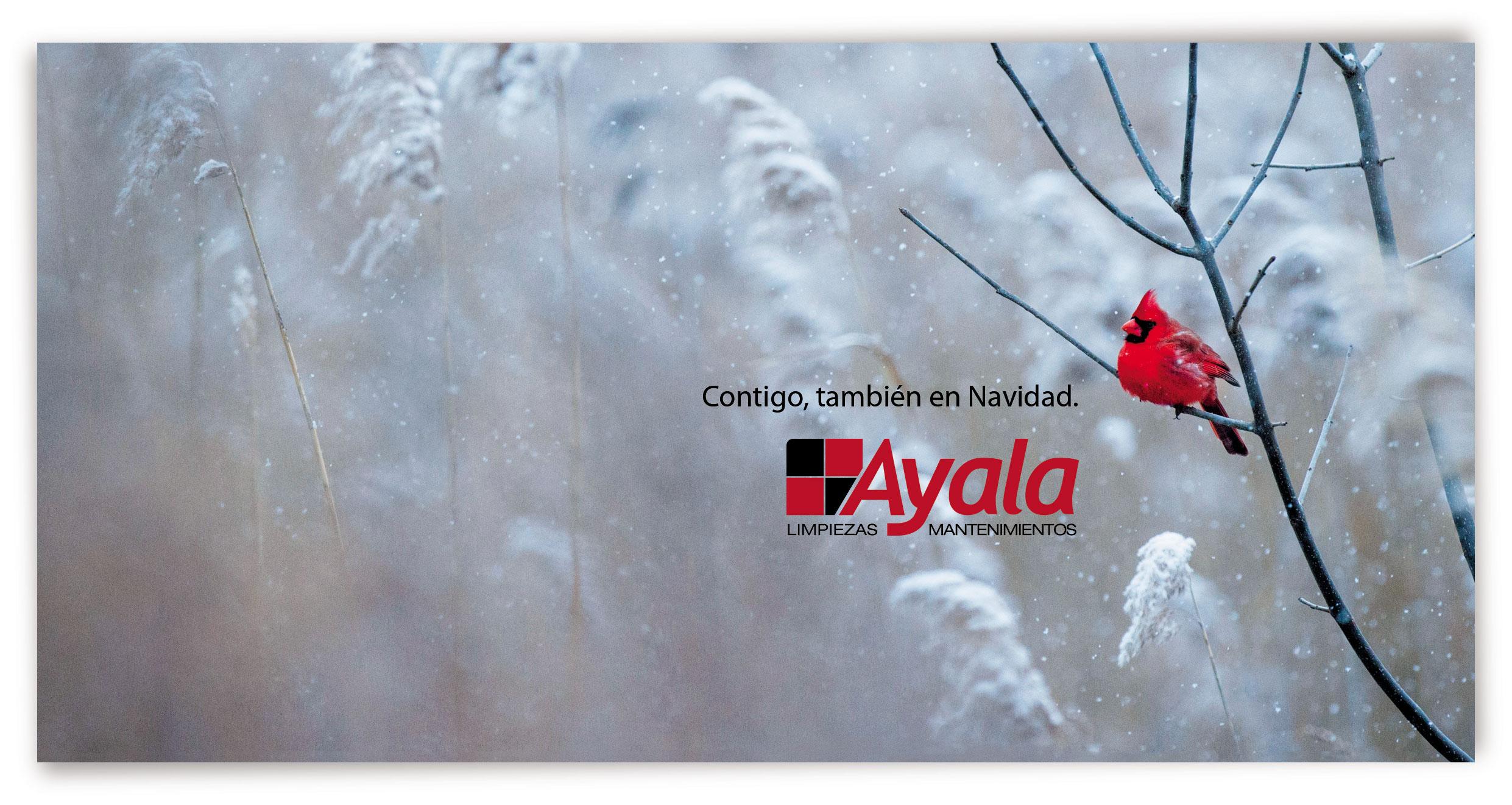 Feliz Navidad desde Limpiezas Ayala